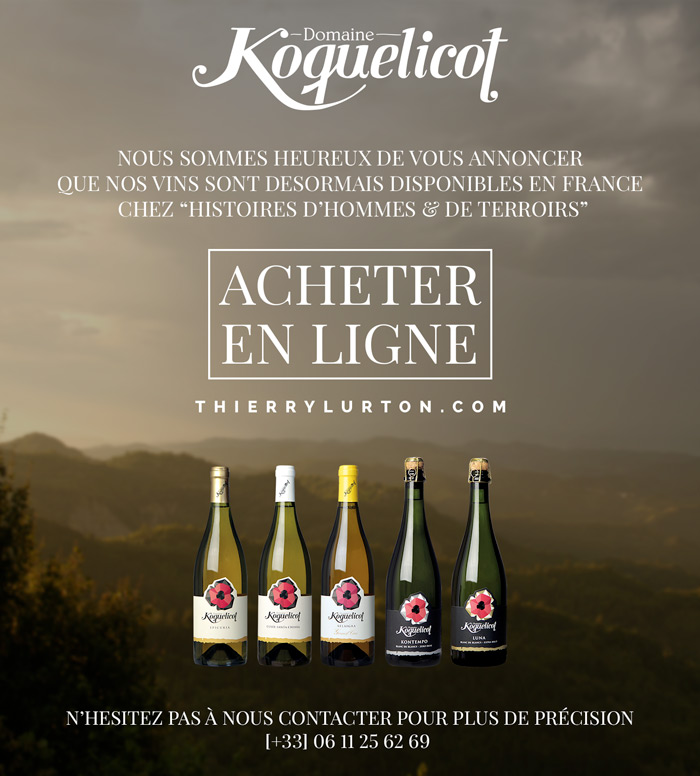 Our Wines are now available in France !